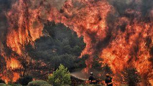 Des pompiers luttent contre les flammes dans le village de Kineta, près d'Athènes (Grèce), le 24 juillet 2018. (VALERIE GACHE / AFP)