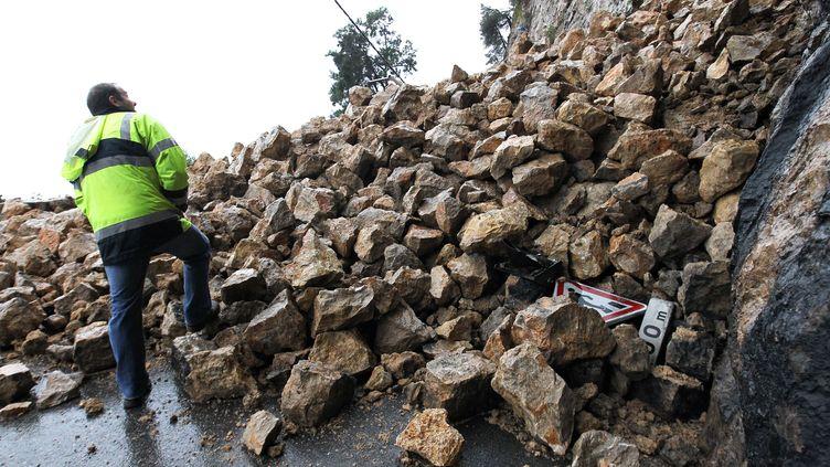 Un éboulement de roche bloque une route, à Roquebrune-cap-Martin (Alpes-Maritimes), le 18 janvier 2014. (JEAN CHRISTOPHE MAGNENET / AFP)