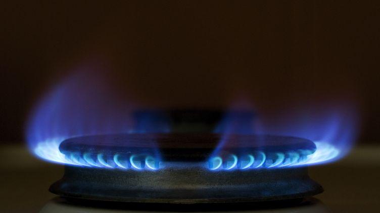 Le Conseil d'Etat anonce lundi 28 novembre avoir suspendu l'application du gel des tarifs du gaz de GDF Suez. (CHARLIE ABAD / AFP)