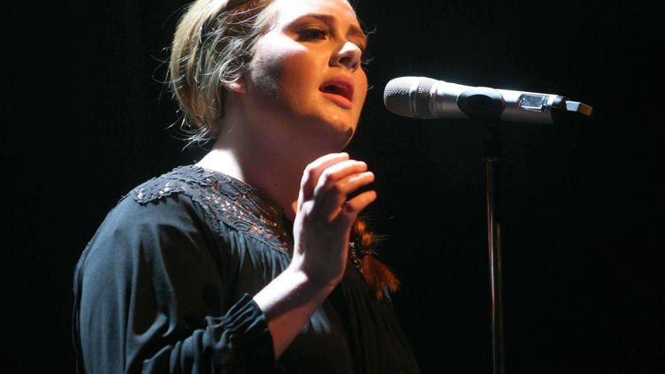 La chanteuse britannique Adele lors d'un concert à Amsterdam au Pays-Bas, en avril 2011. (AR5 / ZJE / WENN.COM / SIPA)