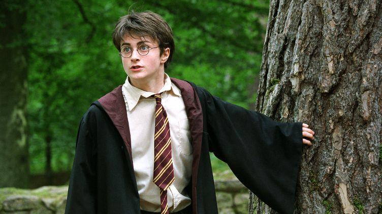 """Daniel Radcliffe dans """"Harry Potter et le prisonnier d'Azkaban"""", sorti en 2004. (HON-MAN FUNG / EYEPRESS / AFP)"""