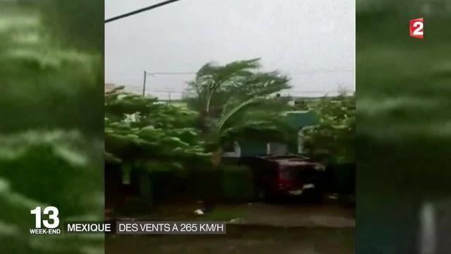Ouragan Patricia au Mexique : pas de victime à déplorer