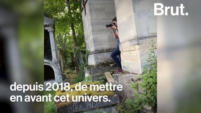 Des renards, des fouines et des rapaces en plein Paris... Conservateur du cimetière du Père-Lachaise, Benoît croise ces animaux au quotidien. Il en a même fait un compte Instagram. Brut l'a suivi.