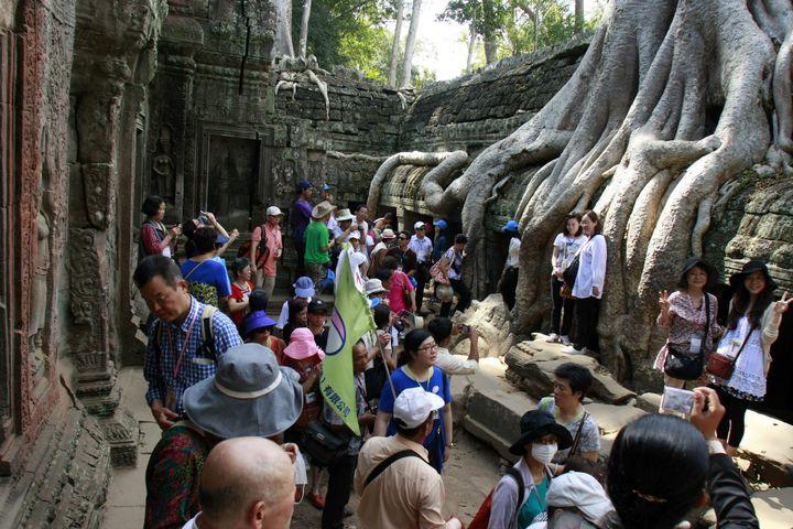 Le temple Ta Prohm et ses racines géantes  (Sovannara Xinhua News Agency/Newscom/MaxPPP)