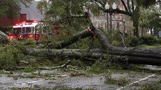 Un arbre entrave la circulation dans une rue de Wilmington, en Caroline du Nord (Etats-Unis), après le passage de l'ouragan Florence, le 14 septembre 2018. (MARK WILSON / GETTY IMAGES NORTH AMERICA / AFP)