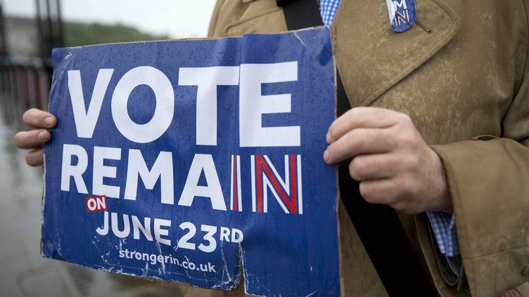 Un partisan du maintien du Royaume-Uni dans l'Union européenne fait campagne à Londres, le 20 juin 2016. (JUSTIN TALLIS / AFP)