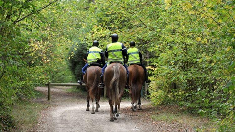 Des gendarmes à cheval participent aux recherches dansd une zone boisée près de Milly-la-Forêt (Essonne) (© AFP PHOTO MIGUEL MEDINA)