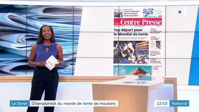 Haute-Vienne : six Français visent le titre de champion du monde de la tonte de moutons