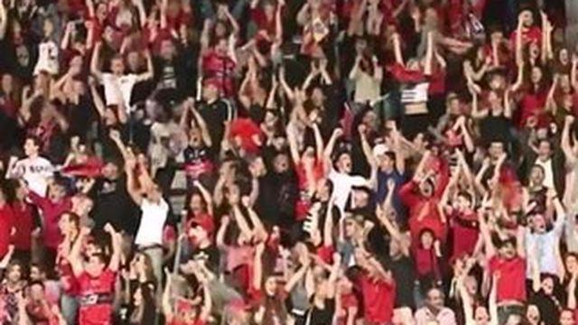 Toulon remporte sa troisième Coupe d'Europe consécutive