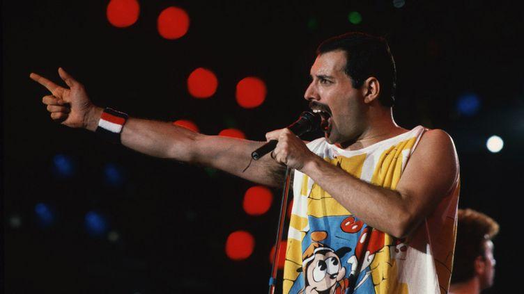 FreddieMercury, le chanteau du groupe Queen, lors d'un concerten 1980. (MAXPPP)