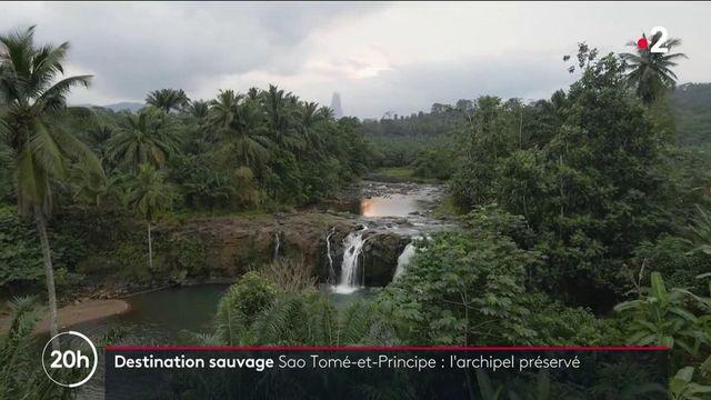 Sao Tomé-et-Principe : un archipel à la nature sauvage et préservée