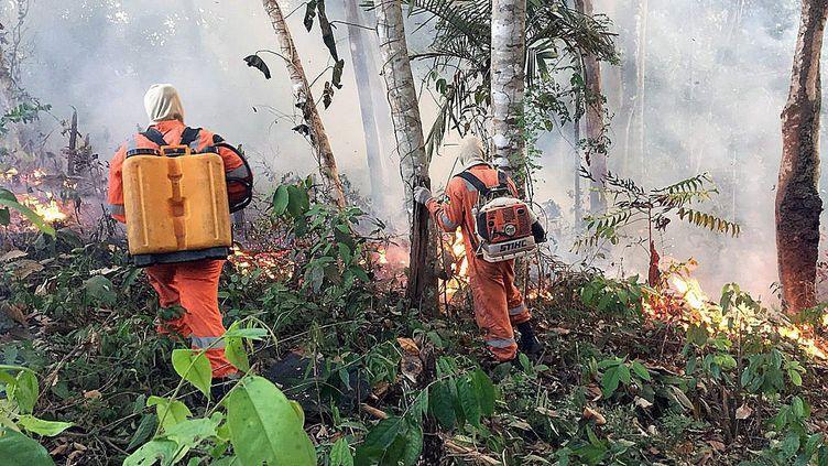 Incendie en Amazonie brésilienne, à Porto Velho, au Brésil, le 18 août 2019. (PORTO VELHO FIREFIGHTERS HANDOUT / MAXPPP)