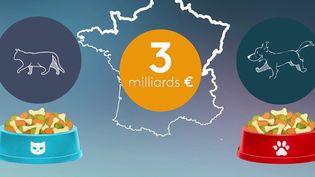 La France compte presque autant d'animaux que d'habitants : plus de 60 millions. Le marché devient un secteur de conquête pour de nombreuses entreprises. (Capture d'écran France 2)