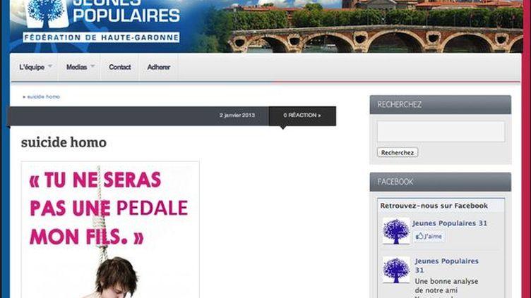 Capture d'écran du site internet de l'UMP Haute-Garonne avant la suppression du visuel choquant, vendredi 25 janvier 2013. (CAPTURE D'ECRAN / DR)