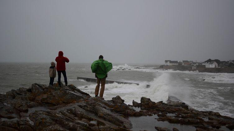 La tempête Eleanor au large de Batz-sur-Mery (Loire-Atlantique), le 3 janvier 2018. (QUENTIN TRIGODET / CROWDSPARK / AFP)