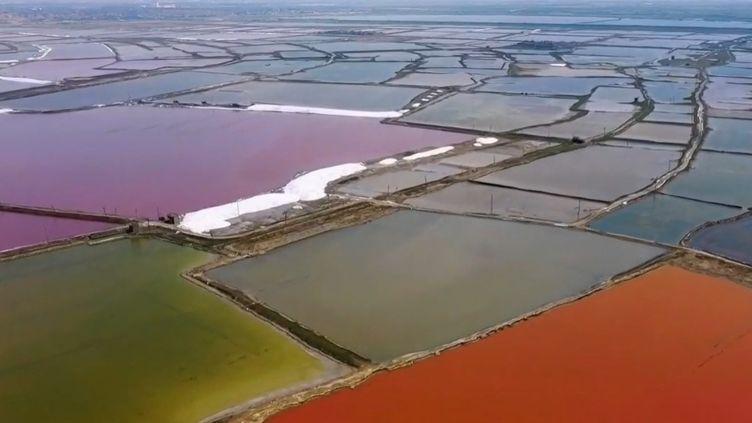 Les marais salants du nord-est de la Chine. (FRANCE 2)