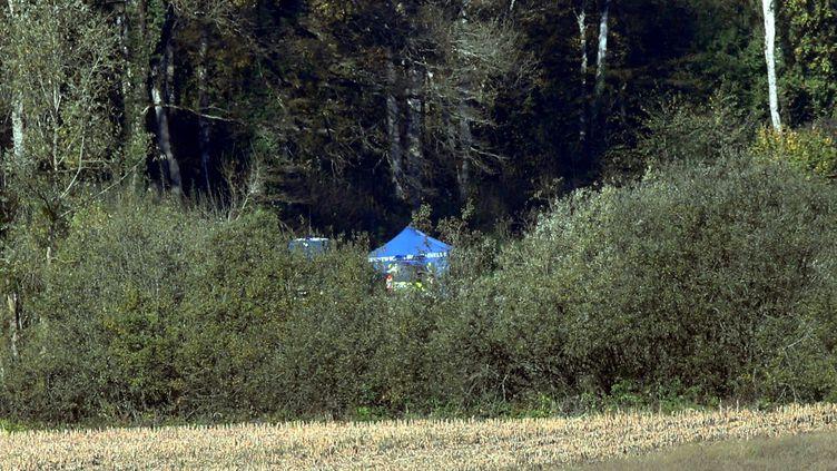 La tente beue des techniciens de l'identification criminelle de la gendarmerie sur le lieu de la découverte du corps d'Alexia Daval, le 31 octobre 2017, près de Gray (Haute-Saône). (MAXPPP)