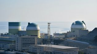 Le réacteur nucléaire n°3 de la centrale d'Ikata (Japon), le 12 août 2016. (JIJI PRESS / AFP)