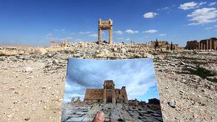 Le site de Palmyre en Syrie, mars 2016 : avant et après la guerre  (JOSEPH EID / AFP)