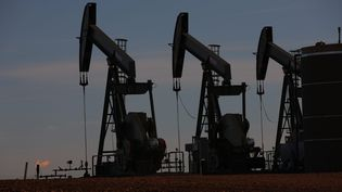 Desforages pétroliers, près de Williston, dans le Dakota du Nord, aux Etats-Unis, le 12 octobre 2013. (MAXPPP)