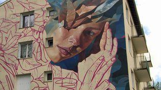 La fresque du street artiste Ratur sur les murs d'un HLM de Cransac (France 3 Occitanie)