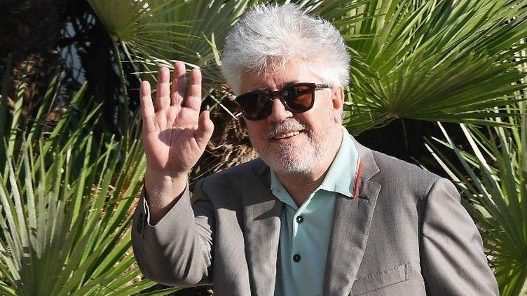 Pedro Almodovar, président du jury du 70e Festival de Cannes (mai 2016)  (Anne-Christine POUJOULAT / AFP)