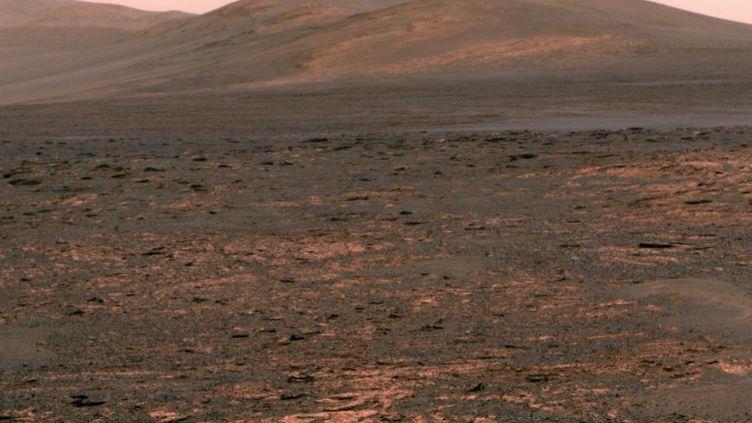 Une vue de la planète Mars photographiée par un robot d'exploration de la Nasa, le 1er juin 2013. (NASA / AFP)