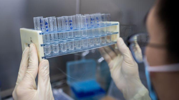 Un laboratoire de recherche pour trouver un vaccun au Covid-19 en Chine, le 29 avril 2020. (NICOLAS ASFOURI / AFP)