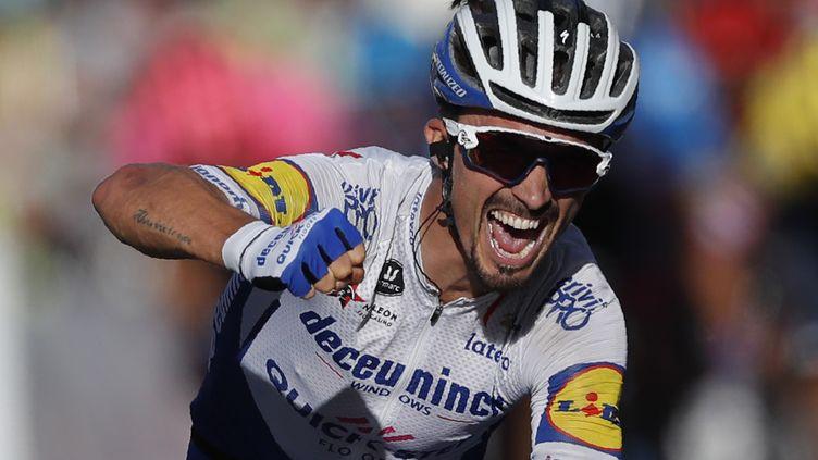 La rage de Julian Alaphilippe, victorieux de la 2e étape du Tour de France (STEPHANE MAHE / POOL)