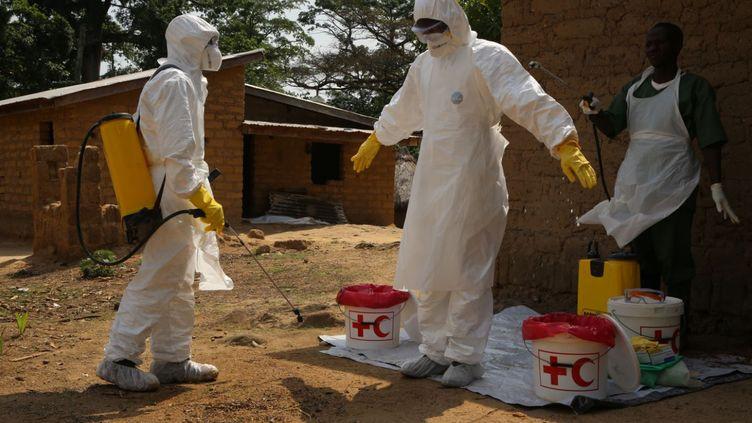 Des volontaires se désinfectent àGuéckédou, en Guinée, le 4 août 2014. (EYEPRESS NEWS / AFP)