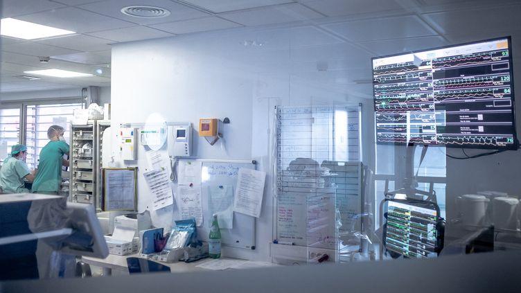 Le service de réanimation de l'hôpital de Perpignan (Pyrénées-Orientales), le26 janvier 2021. (ARNAUD LE VU / HANS LUCAS / AFP)