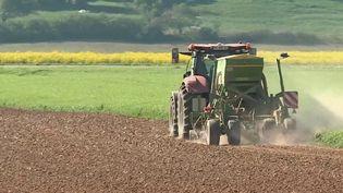 Dans le Grand Est, la première quinzaine du mois d'avril est la plus chaude enregistrée depuis que les relevés existent. La menace d'une sécheresse plane, ce qui inquiète les agriculteurs. (France 3)