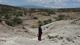 Tanzanie : le cratère du Ngorongoro, paradis pour animaux et berceau de l'humanité (France 2)