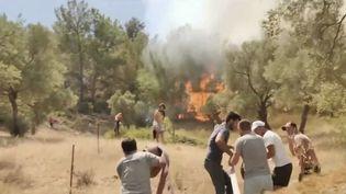 Turquie : la détresse de la population face aux violents incendies (FRANCE 2)