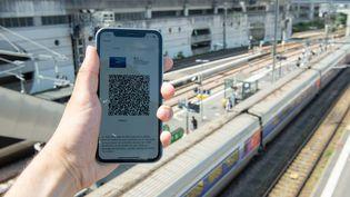 Photo d'illustration dupass sanitaire qui doit devenir obligatoire dans les trainsà partir du 9 août. (EMILE KEMMEL / MAXPPP)