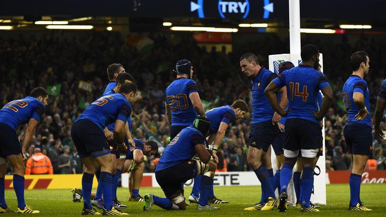 L'équipe de France a une semaine pour préparer le quart de finale face aux Blacks (LOIC VENANCE / AFP)