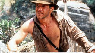 """Harrison Ford dans """"Indiana Jones et le temple maudit"""" (1984) (7E ART / PARAMOUNT PICTURES / AFP)"""