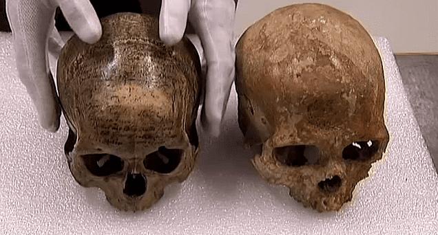 Les crânes de Descartes (à gauche) et de l'Homme de Néanderthal  (France 3)