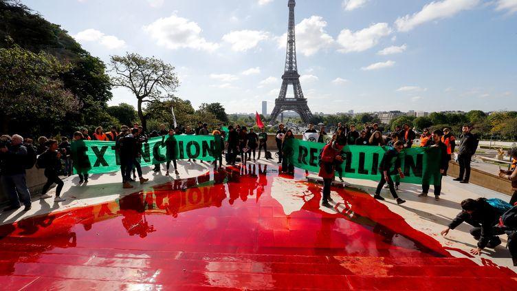 Du faux sang déversé par des militants d'Extinction Rebellion, le 12 mai 2019, sur les marches du Trocadéro à Paris. (FRANCOIS GUILLOT / AFP)