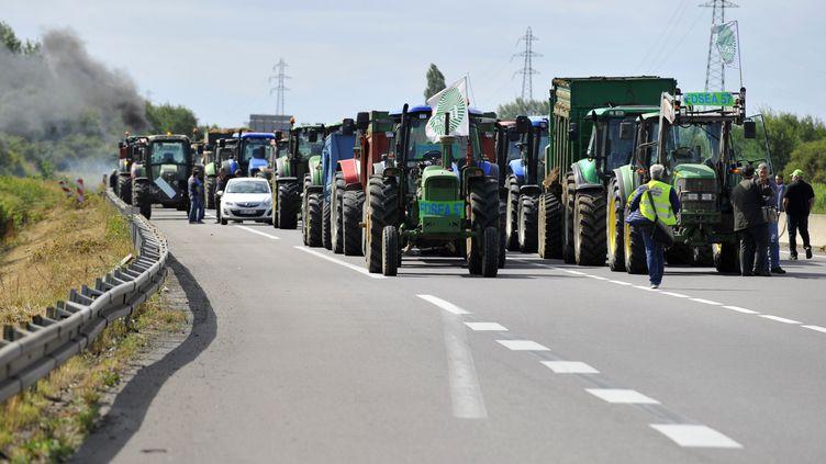 Des agriculteurs bloquent l'autoroute A31 à Hauconciourt (Moselle), le 28 juillet 2015. (JEAN-CHRISTOPHE VERHAEGEN / AFP)