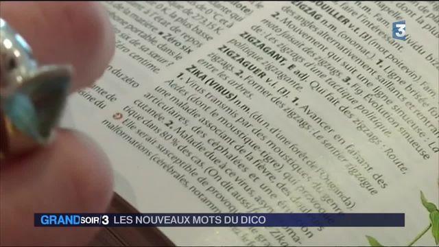 """""""Emoji"""", """"zadiste"""", """"troll""""... Les nouveaux mots du dictionnaire"""