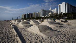 60 sculptures de sable en forme de voiture installées pour la foire annuelle de l'Art Basel dans le but d'interpeller touristes et badauds sur la réalité du changement climatique, décembre 2019 (EVA MARIE UZCATEGUI / AFP)