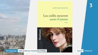 La couverture du livre de Abnousse Shalmani (France 3)