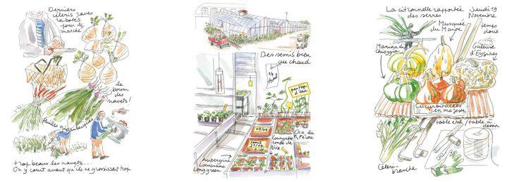 (Raphaèle Bernard-Bacot / Editions Glénat 2017 )