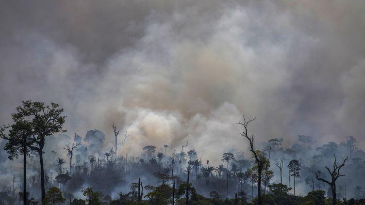 De la fumée s'étire au dessus de la forêt dans le bassin de l'Amazone, au Brésil, le 27 août 2019. (JOAO LAET / AFP)