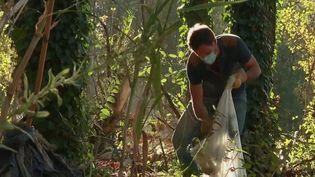 Un an après la tempête Gloria, les habitants de Céret (Pyrénées-Orientales) tentent de réparer les dégâts. Avec la crue, des tonnes de déchets sont remontés à la surface sur les berges du Tech. (France 2)