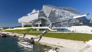 Le musée des Confluences à Lyon  (Jacques Pierre / Hemis.fr / Hemis / AFP)