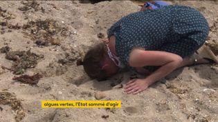 Unemanifestante dénonce la politique de l'autruche menée à ses yeuxparl'Etatconcernant les algues vertes (FRANCEINFO)