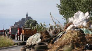 Des éleveurs bloquent la route vers le Mont Saint-Michel, dans la Manche, le 20 juillet 2015. (CHARLY TRIBALLEAU / AFP)