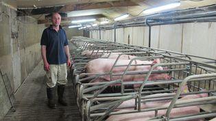 Emmanuel Rault dans son élevage de porcs, àQuintenic (Côtes-d'Armor), jeudi 11 juin 2015. (F. MAGNENOU / FRANCETV INFO)